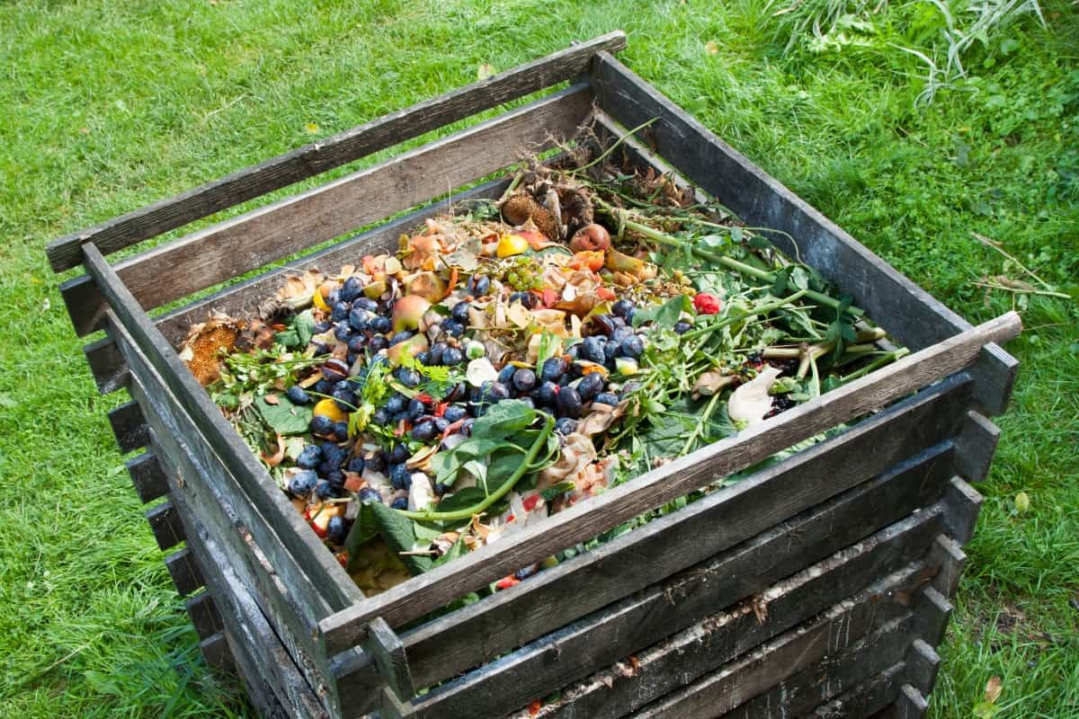 A square wooden compost bin with charcoal and kitchen waste on top.