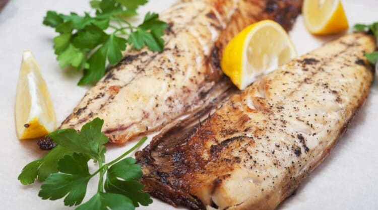 Some fish fillets on a plate with lemon after broiling to create a nice sear