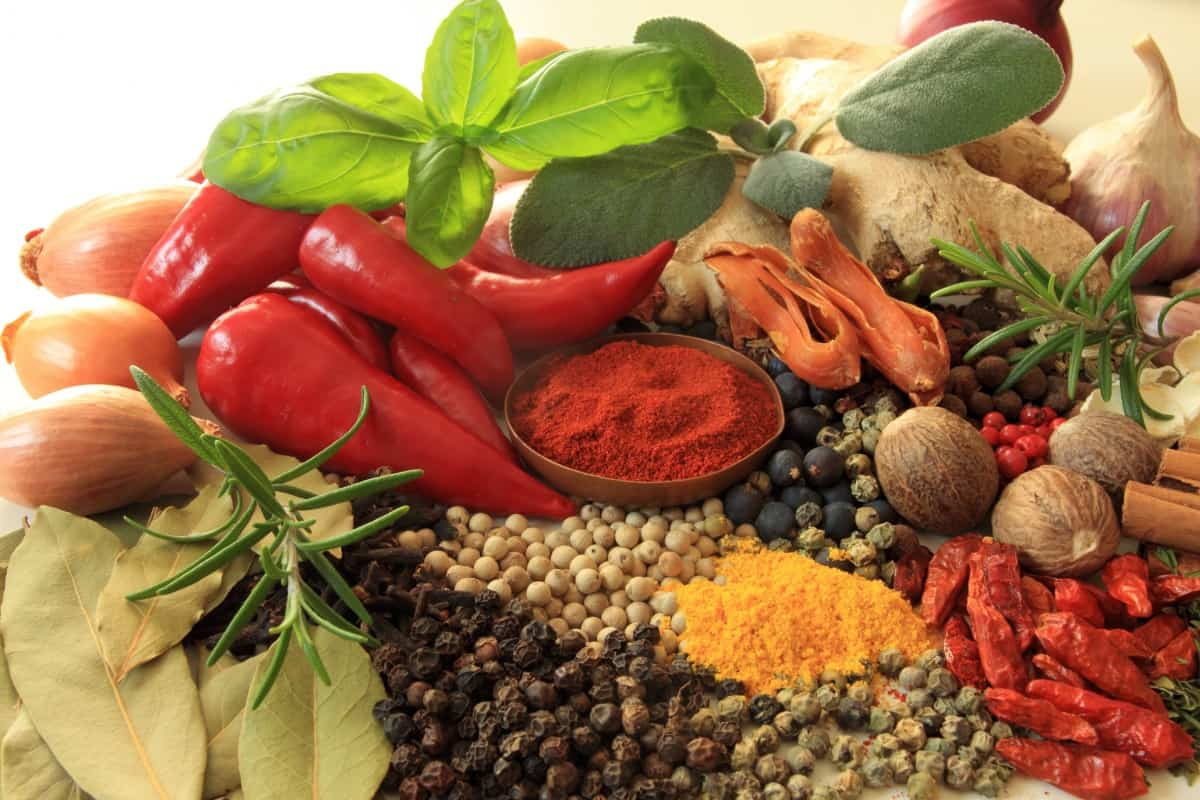 A wide selection of herbs and spices arranged for a photograph on a white surface