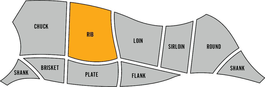 Diagram showing where the rib primal is on the cow