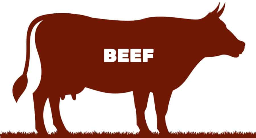 Graphic of beef written inside a silhouette of a cow