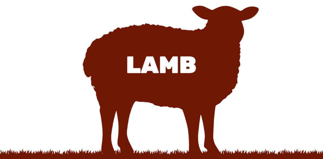 graphic of lamb written inside a silhouette of a lamb