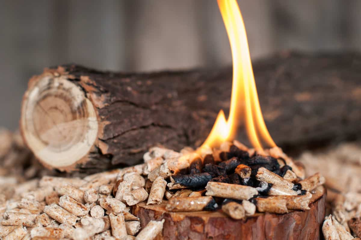 A thick tree branch covered in bark, behind some burning wood pellets