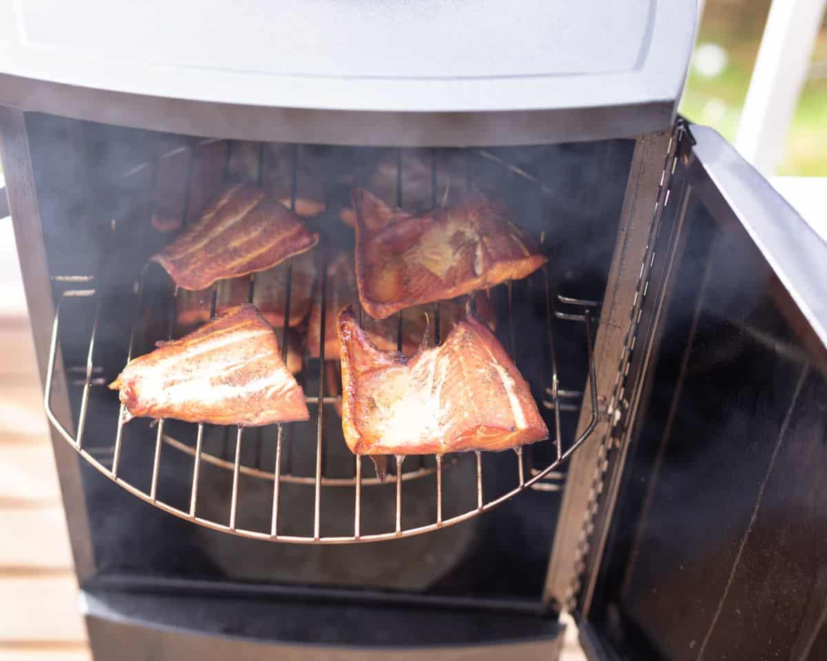 Salmon fillets in a propane smoker