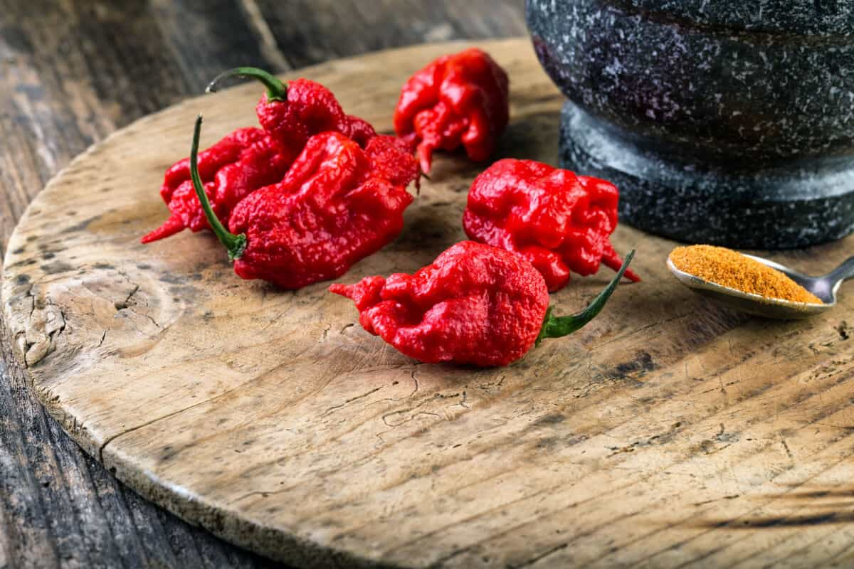 A handful of Carolina Reaper chilis on a wooden cutting board next to a pestle and metal spoonful of ground spice