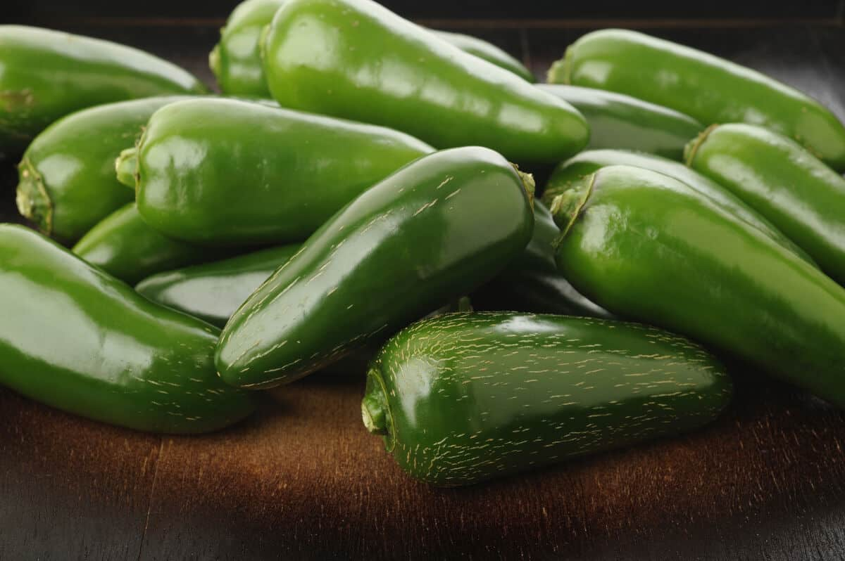 Close up of a pile of fresh jalapeno peppers
