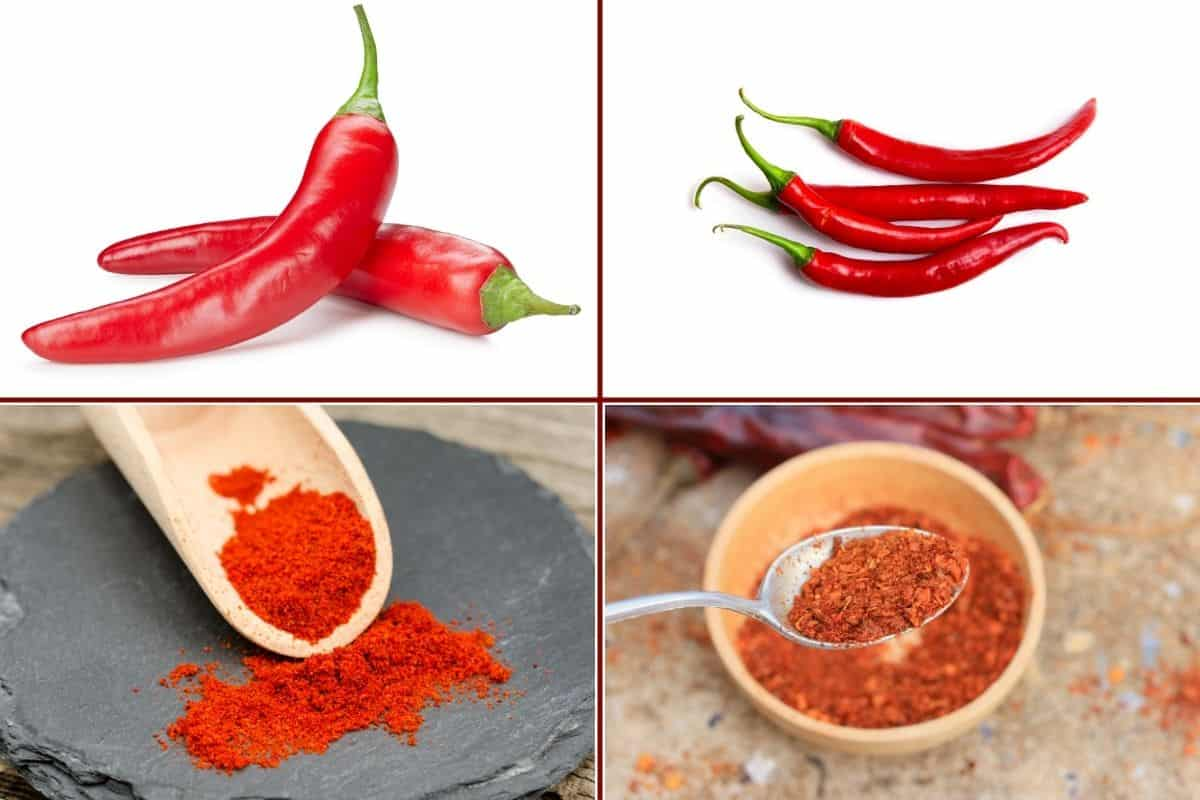 Four image collage: One each of whole and ground paprika and cayenne pepper.