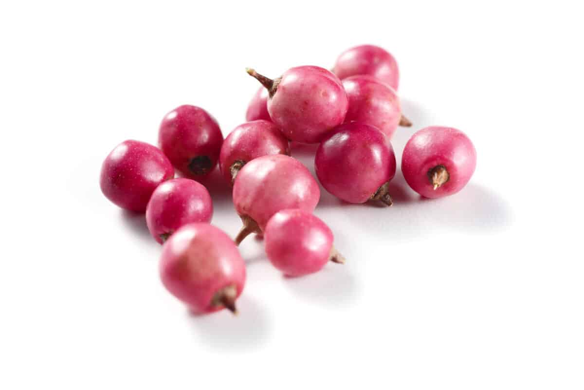 A dozen or so fresh pink peppercorns on a white surface