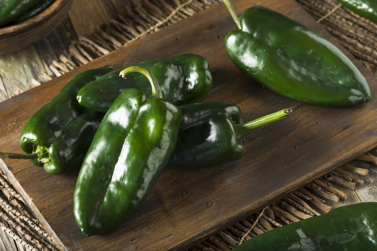 poblano ancho chilis on a dark wooden board